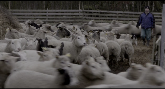 Wolves at the Borders - Film still 1