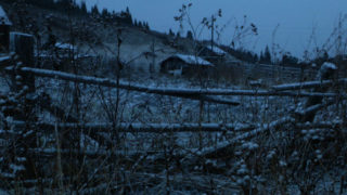 Film still of the film Les Forêts sombres, directed by Stéphane Breton, Visions du Réel 2017
